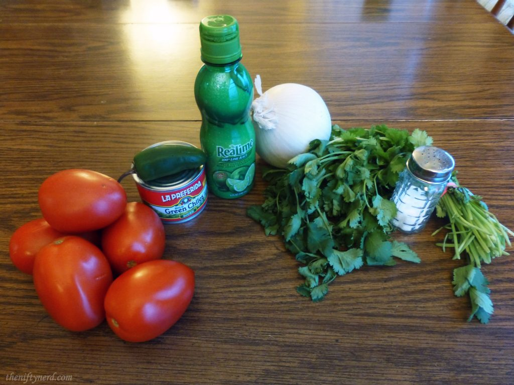 Ingredients for fresh, homemade salsa