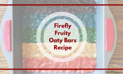 Firefly Fruity Oaty Bars